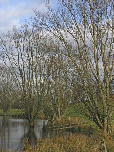 Hellmoor, Panten, Schleswig-Holstein